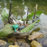 Was für ein Urwald! Die Kinder haben bei der schwimmenden Insel ganze Arbeit geleistet.   Foto (c) kinderoutdoor.de