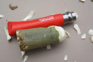 LIeber einen Pilz in der Hand, als einen am Fuß! Foto (c) kinderoutdoor.de