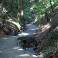 In der Schelmenklinge, einer Waldschlucht bei Lorch, stehen über 20 Wasserspiele.   Foto (c) Stadt Lorch