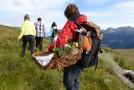 Voll bepackt mit gesunderen Leckereien von der Bergwiese geht es zurück.  Foto (c) Patrick Säly