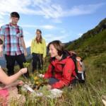Kräuterwanderung in Silvretta Montafon: Nützliches, gesundes und leckeres von der Wiese