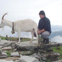 Kinder Outdoor Abenteuer in der Schweiz Foto (c) Ticino Turismo