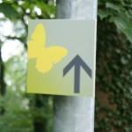 Schmetterlingswege mit Kindern erwandern: Das große Flattern