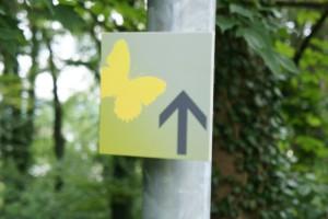 Auf dem Schmetterlingsweg dreht sich alles um diese bunten Insekten.  Foto (c) kinderoutdoor.de
