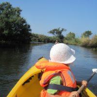 """Durch die """"Everglades"""" vom Faaker See paddeln ist ein Abenteuer für die Familie.   foto (c) kinderoutdoor.de"""