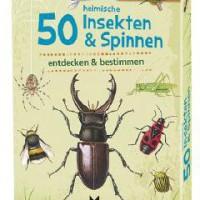 """Expedition Natur. """"Mama, Papa, was krabbelt da für ein Käfer?!"""" Ein kurzer Blick in die Karten vom Moses Verlag und schon weiß man mehr.  Foto (c) Moses-verlag.de"""