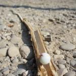 Murmelbahn mit Kindern basteln: In zehn Minuten Spielfertig!