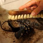 Wanderschuhe pflegen: Eine saubere Sache!