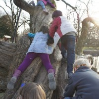 Auch das Klettern auf einen Zauberbaum gehört zur Schatzsuche am Kindergeburtstag dazu.  Foto (c) kinderoutdoor.de