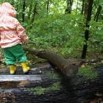 Natur Schnitzeljagd für Kinder: Wald geht´s raus!