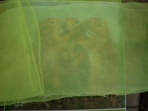 Hier gilt es bei der Schnitzeljagd Bilder zu erraten. Was das wohl für Tiere sind? Foto (c) kinderoutdoor.de