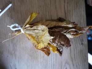 Mit Kindern basteln wir eine Herbstfee und das ist ihr Rock aus Herbstlaub. Foto (c) kinderoutdoor.de