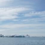 Isländisch Moos Suppe: Fjallagrasasupa in die Teller