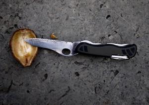 """Mit Kastanien basteln: Wenn in der Schale noch eine """"Trennwand"""" ist, schneidet diese mit dem Taschenmesser raus. Foto (c) kinderoutdoor.de"""