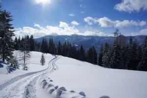 Winter in der Steiermark. Rodeln gehört unbedingt dazu.  Foto (c) kinderoutdoor.de