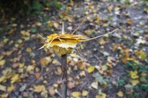 Ein Herbstlaub Spieß ist ein perfektes Spiel bei einer Herbstwanderung. Foto (c) kinderoutdoor.de