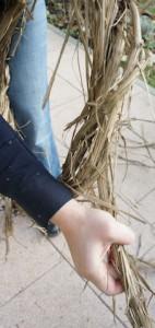 Adventskranz selber binden. Kinder brauchen dabei ein wenig Hilfe, denn die Ranken vom Wilden Hopfen haben ordentlich Spannung drauf. Foto (c) kinderoutdoor.de
