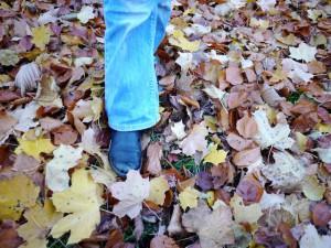 Und hier legen wir ein Labyrinth im Herbstlaub an. Foto (c) kinderoutdoor.de