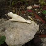 Schnitzen mit Kindern: Wir schnitzen mit dem Taschenmesser einen Seehund