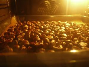 Hier haben es die Maroni richtig gut warm. Foto (c) kinderoutdoor.de