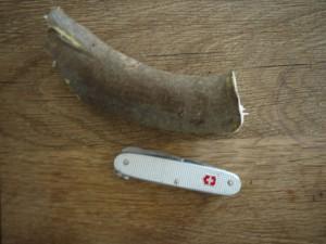 Schnitzen: Anleitung für eine lustige Ente. So sieht der Vogel aus, bevor das Holz unser Schweizer Taschenmesser kennenlernt. foto (c) kinderoutdoor.de