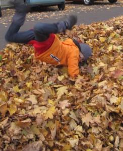 Herbstlaub Jumping! Der ultimative Spaß für Outdoor Kinder. Foto (c) kinderoutdoor.de