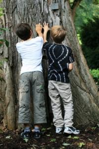 Schnitzeljagd im Wald oder dem Park. Da sind die Kinder mit Eifer dabei. Foto (c) Angelina Ströbel  / pixelio.de