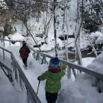 Jack Wolfskin Kinderwinterstiefel Lake Tahoe Texapore im Test