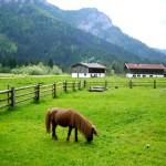 Wandern mit dem Kinderwagen im Chiemgau