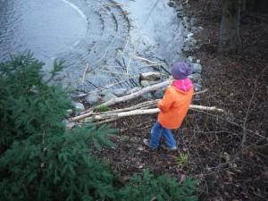 Kindergarderobe selber basteln: Zuerst Biberholz sammeln. Foto (c) kinderoutdoor.de