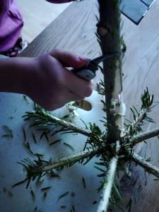 KInder schnitzen mit dem Taschenmesser einen Outdoorleuchter. Hier entfernen wir die Nadeln. Foto (c) kinderoutdoor.de