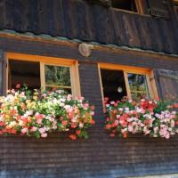 Familienfreundliche Berghütten: Die Wannenkopfhütte gehört auf jeden Fall dazu.   Foto (c) kinderoutdoor.de