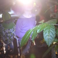 Im Botanischen Garten mit der Stirnlampe nachts die Pflanzen anschauen.   Foto (c) kinderoutdoor.de