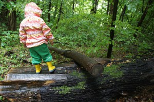 Schnitzeljagd Ideen für den Wald: Über den Baumstamm balancieren mit einem Hindernis ist ein Abenteuer.  Foto (c) Kinderoutdoor.de