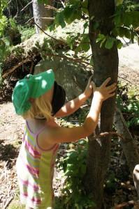 Schnitzeljagd im Wald: Findet Ihr den Baum mit offenen Augen wieder? Foto (c) kinderoutdoor.de