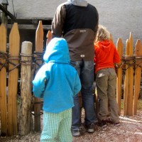 Urlaub auf dem Bauernhof in Südtirol: Der Rote Hahn steht für Qualität und Ihr bekommt einiges vor Ort zu sehen.  foto (c) kinderoutdoor.de