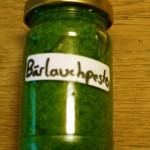 Bärlauch Pesto: Kinderleicht und schmeckt super!