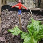 Kinder schnitzen einen Tomatenstock: Hier ist die Anleitung