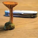 Schnitzen lernen: Anleitung für einen echt aussehenden Pilz