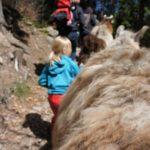 Familienurlaub am Katschberg: Bäche, Berge und begeisterte Kinder