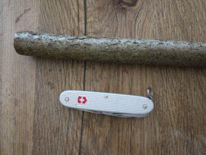 Schnitzen lernen mit dem Taschenmesser: Könnt Ihr den Seeotter schon erkennen? foto (c) kinderoutdoor.de