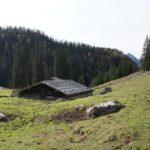 Wandern mit Kindern im Berchtesgadener Land: Kühe und Klettersteig