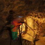 Wandern mit Kindern in Thüringen: Fledermäuse hören und Dampfeisenbahn fahren