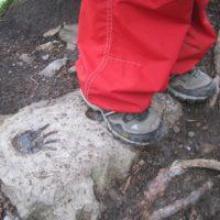Wanderschuhe für Kinder: Low Cut Schuhe sind vielseitig und lassen sich fürs Wandern oder auch in die Schule anziehen.   foto (c) kinderoutdoor.de