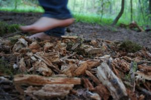 Barfußpfade für die ganze Familie: Einer ist im Lippepark von Hamm. foto (c) kinderoutdoor.de