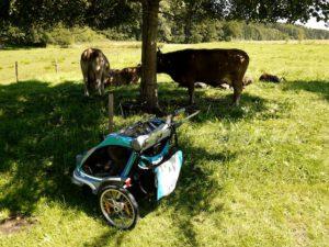 Der Thule Chariot CX 2 im Test: Ein wenig fehlt es noch zu Perfektion.  foto (c) kinderoutdoor.de