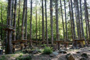 Kletterwald noch geöffnet: Bald ist die Saison für die Baumkraxler vorbei. foto (c) kinderoutdoor.de
