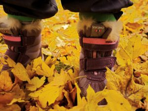 Schnitzeljagd durch den Herbstwald: Wo ist der Ball? Foto (c) kinderoutdoor.de