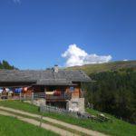 Kinderschuhe Salomon X-Ultra GTX J im Test: Rauf auf die Lüsner Alm in Südtirol