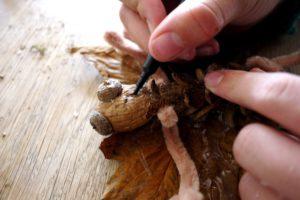 Noch mit dem Stift den Walnusskopf der Fledermaus bemalen.  foto (c) kinderoutdoor.de